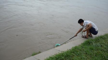 台风利奇马绕过山东临沂,解除红色预警的沂河现况,市民河边捞鱼