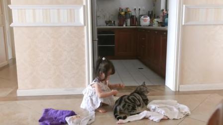 脾气好的胖猫咪,被小铲屎官试穿各种衣服哈哈