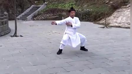 武当玄武拳(正反面慢节奏)
