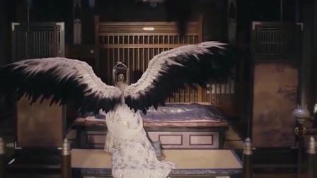 九州缥缈录:羽然姑姑替归尘疗伤,后背惊现银色羽翼!