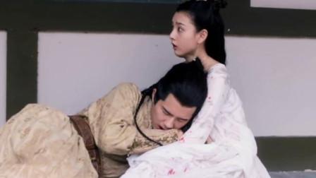 九州缥缈录:世子一头扑进女孩怀里,将军-放开我家主子!女孩傻眼了!