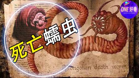 流传100多年的未知生物,蒙古死亡蠕虫到底真的存在吗?