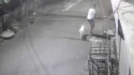 监控实拍:女子深夜遛狗,男子起了邪念