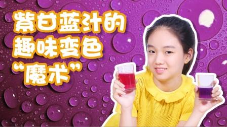 """紫甘蓝汁的趣味变色""""魔术""""   科学小实验"""