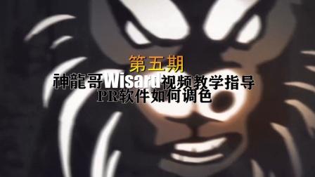 英雄联盟神龍哥Wisard视频教学指导第五期PR软件调色