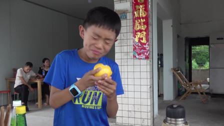 四川有个柠檬之乡,柠檬很有名,小队员拿了一个现场开吃!