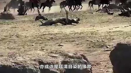 中国史上唯一女将!死后设座墓,支送葬队全死于非命