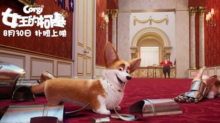 """动画《女王的柯基》首映 """"唐风""""版海报曝光,电眼柯基超萌来袭"""