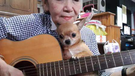 坚持一个爱好到老,老奶奶吉他弹唱《Sha la la》