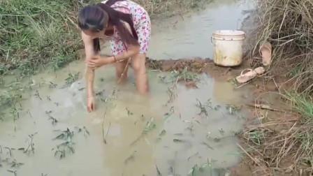 野外水坑有好多鱼,美女一人抓鱼,汗流浃背