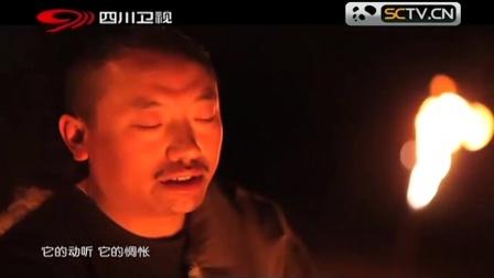 悠扬的歌声令人沉醉,不愧是藏歌传承人扎西尼玛,殿堂级水平啊