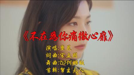 玺晨 - 不再为你痛彻心扉 (DJ何鹏版)