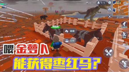 乐高无限05:给驯服的普通马喂食金萝卜,就能获得枣红马?