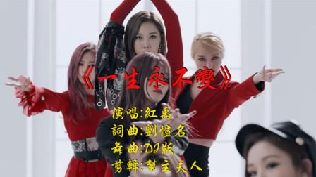 红禹 - 一生永不变 (DJ何鹏版)