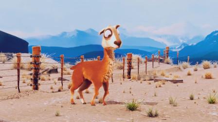 搞笑动画解说,蠢萌羊驼跳跃栅栏吃东西!