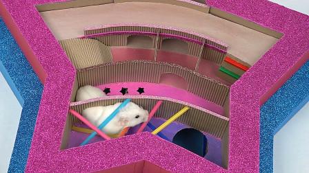 真会玩!用纸板设计一款有趣的迷宫,放只仓鼠进去试试看看