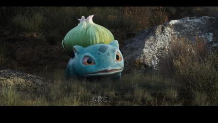 皮卡丘危在旦夕,关键时刻妙蛙种子出现了
