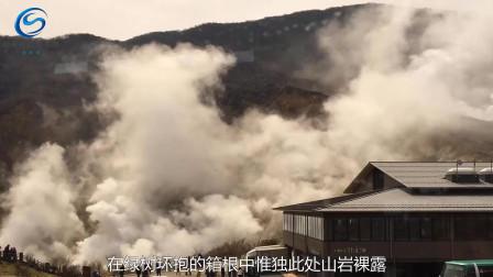感受地球呼吸、感受地球生命运动的窗口——日本大涌谷