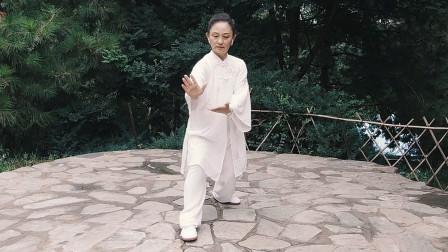 张光萍教学视频-太极拳八法五步 第十二课 活步捋