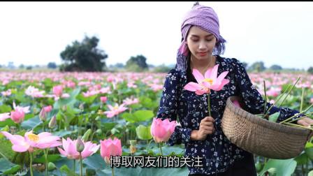 泰国美女模仿李子柒:采藕做莲子甜点,网友:像一副油画,好有治愈感