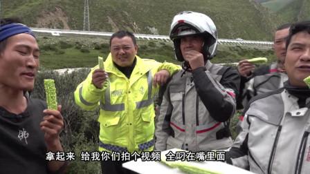 川藏线上遇到红人苦瓜哥,推车从贵州到拉萨,已经走了4个月!