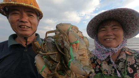泰叔带泰婶赶海,水中荒岛没人来海货多到爆,一手提一大把青蟹