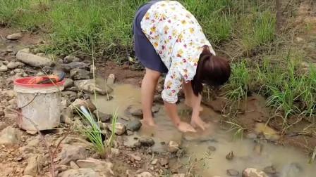 水沟这种鱼好多,小妞一人来抓鱼,抓鱼姿势很正!