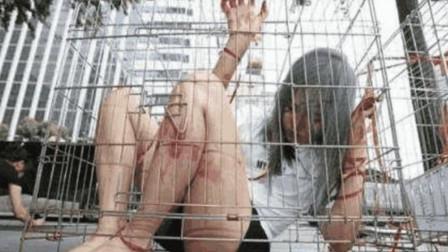 如果你能在笼子里待着,就能得到千万年薪,为啥却无人想挑战?