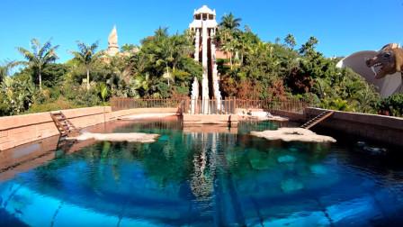 西班牙的泰国主题水上乐园,有着三十米高的垂直透明滑道,还要经过鲨鱼群