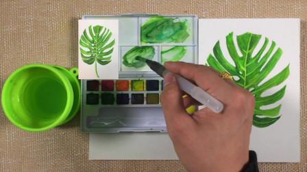 水彩第一季第3集—水彩颜色的调和运用
