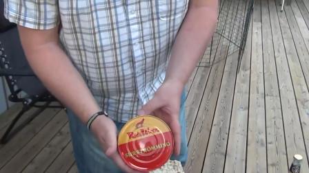 鲱鱼罐头那么难闻还不好吃,为什么还每年大量生产呢?