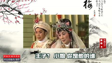 尹桂芳:沙漠王子-手抚琴儿心悲惨(晚年视频字幕版)