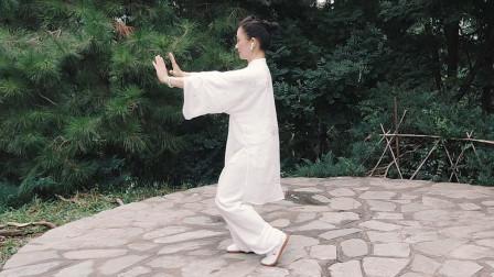张光萍教学视频-太极拳八法五步 第十三课 活步挤按