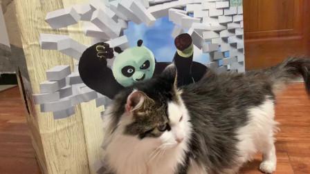 纯手工自制猫窝,既温暖又惹猫咪喜爱,成本仅需20元