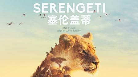 彩虹合唱团 创作演唱 BBC Earth 纪录片《塞伦盖蒂》同名中文推广曲