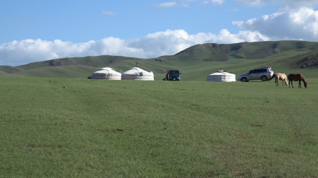 草原绿了(Mongolia)