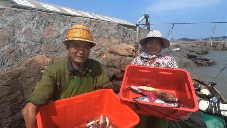 泰叔出海网到一条宝贝鱼,一斤以上要上千块,拿到街上就被抢购了