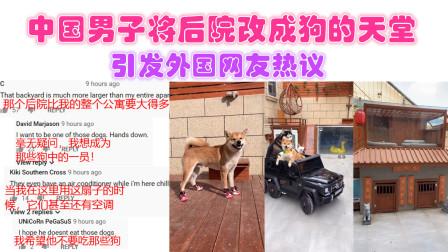 中国男子将后院改成狗的天堂,引发外国网友热议!
