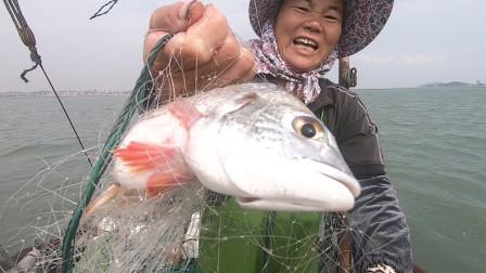 泰叔泰婶出海捕鱼,开闸过后放网鱼获太多,泰婶话都说不顺了