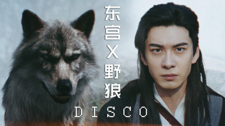 用野狼DISCO打开东宫名场面