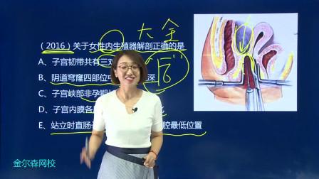关于女性生殖系统的解剖