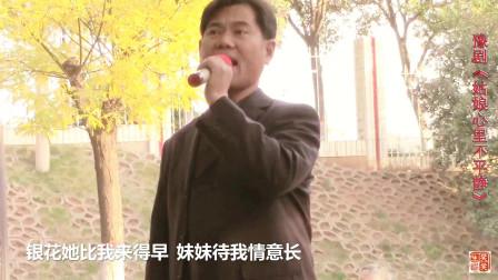 大叔唱得真有味!豫剧《姑娘心里不平静》清唱:十里湖堤好风光