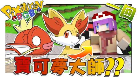 「Pokemon」创世神居然也有神奇宝贝-我当神奇宝贝大师 -第一回 Pixelmon RGB