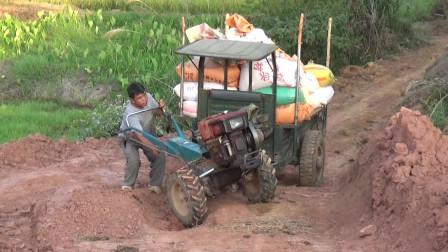 农村阿钦:拉车稻谷回家,得经过这陡坡,拖拉机还是这种给力