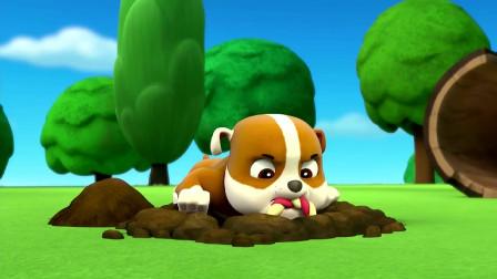 汪汪队立大功:阿奇和小利都找到拔河玩具 还在土里就开始拔河比赛吗