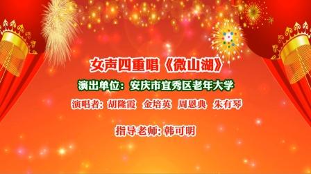 女声四重唱《微山湖》演出单位:安庆市宜秀区老年大学