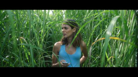 草地迷宫,斯蒂芬金小说改编,进去就出不来