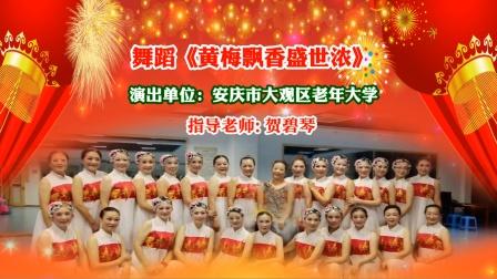 舞蹈《黄梅飘香盛世浓》演出单位:安庆市大观区老年大学