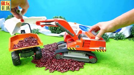 挖掘机和卡车在运输豆子