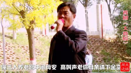 大叔翻唱豫剧名师李树建《大登殿》名段,观众:唱的有韵味有水平